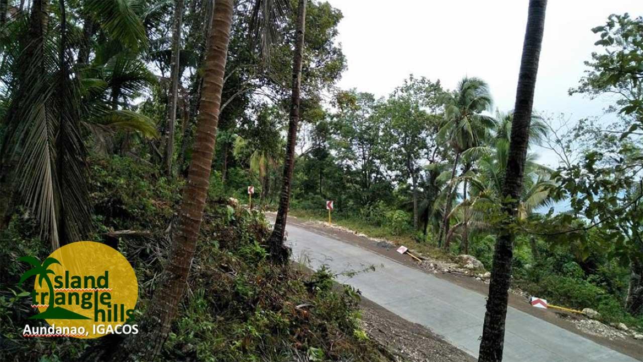 Island Triangle Hills Affordable Overlooking Lots, Samal (SOON)