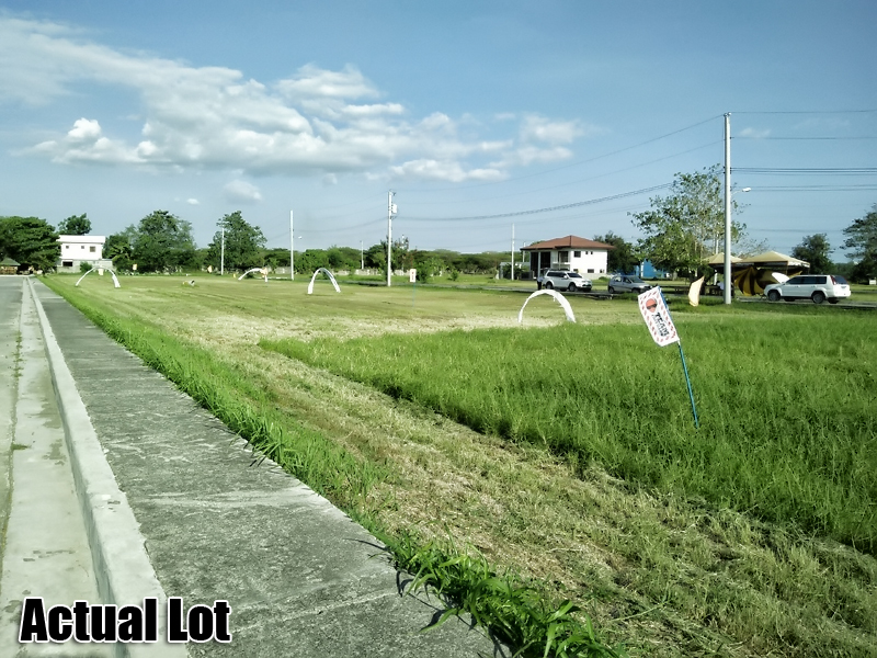 Ciudad Verde Affordable Prime Lots For Sale!